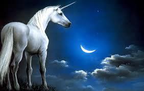 argo estrategia inmobiliaria promocion unicornio