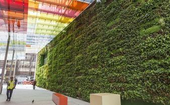 pared verde sostenibilidad apartamentos rohrmoser tribca tribeca inmobiliario condominio argo estrategia.jpg